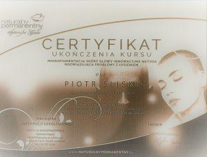 certyfikat mikropigmentacja
